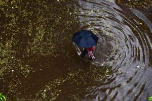 Bengaluru to see heavy rains till Aug 25 yellow alert issued for nine districts