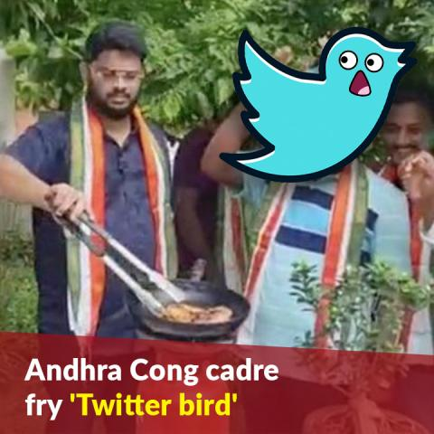Andhra Cong cadre fry 'Twitter bird' to protest action against Rahul Gandhi