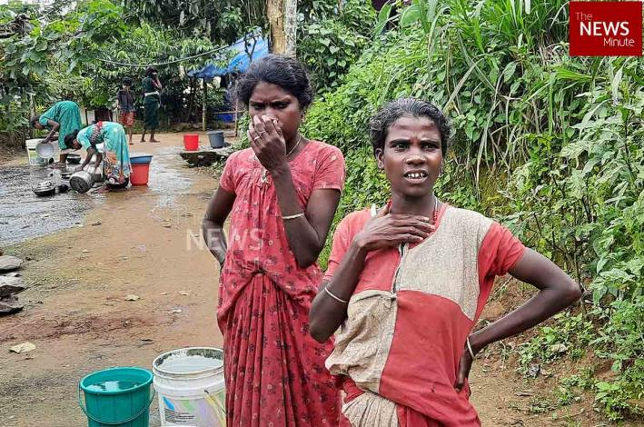 The labour for land: Wayanad's tribal people need to become owners to escape poverty